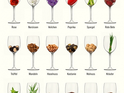 Poster of wine flavours